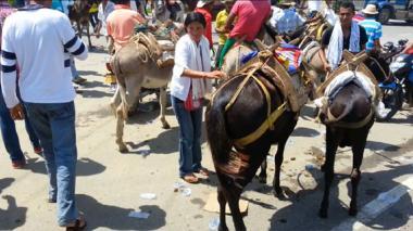 En Córdoba bloquean una troncal con burros, caballos y mulos
