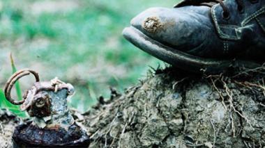Piden llevar a mesa de diálogos de paz con Farc asunto de minas antipersona