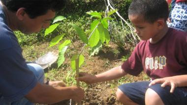 Epa Cartagena donará 100 árboles en memoria del Nobel Gabriel García Márquez