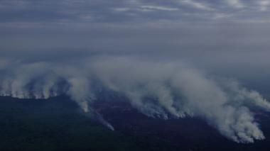 Incendios han arrasado 900 hectáreas de Ciénaga Grande