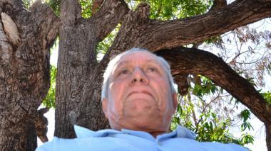 El palo de mango de la Plaza Alfonso López podría morir