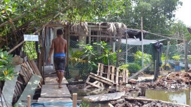 Según las autoridades, 165 familias han invadido los manglares, lo que se ha incrementado en los últimos años.