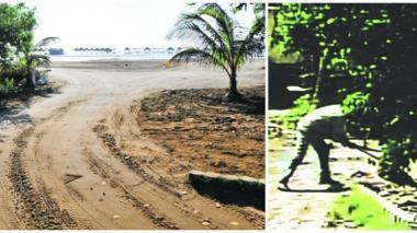 Zona donde habría sido talado el grupo de mangles. Imagen tomada de un video muestra cuando un hombre corta los árboles.