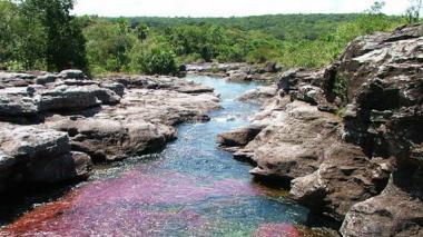 Anla revoca la licencia ambiental para exploración en la Serranía de La Macarena