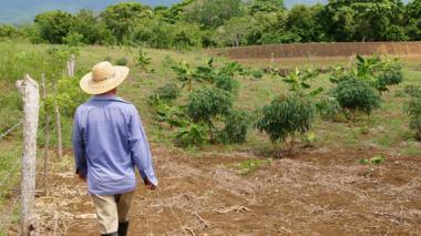 Recuperar tierras, un camino tortuoso y de alto riesgo