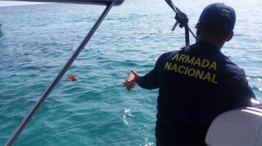 Armada recupera especies protegidas en Islas del Rosario