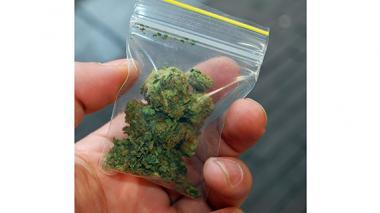 Publican los requisitos para producir derivados de cannabis