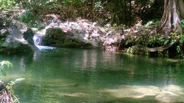 Comisión segunda de la Cámara pedirá que se revoque licencia para desvío del arroyo Bruno