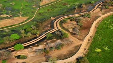 La Ciénaga Grande de Santa Marta es uno de los ecosistemas de la región que más ha sufrido con la intervención del hombre y la expansión agrícola.