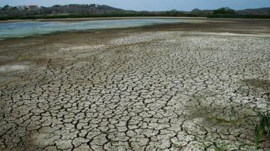 En 2014, el lago El Cisne, en Atlántico, agonizaba, como lo registró este medio.