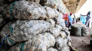 El golpe del paro camionero a los alimentos en la Región Caribe