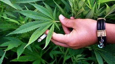 Estudio afirma que la marihuana recreativa ocasiona efectos dañinos en el cerebro