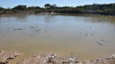 Imagen de una zona de la embocadura del río Pilcomayo, de Paraguay.