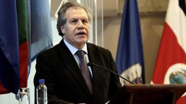 OEA celebra diálogo entre Gobierno Nacional y ELN
