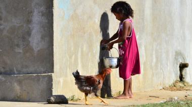 Corte Constitucional tutela derechos de niños wayuu