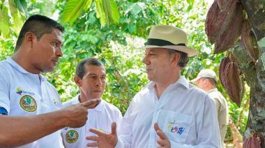 En el posconflicto, cacao puede sustituir  la coca en 40% en el Catatumbo: productores