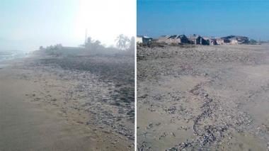 Mortandad de peces en Tasajera alarma a los pescadores