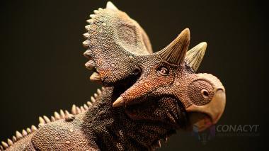 A los científicos les llamó la protuberancia formada en la frente del dinosaurio.