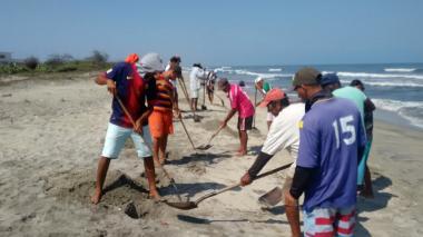 Recogen peces muertos en playas de Tasajera y Ciénaga