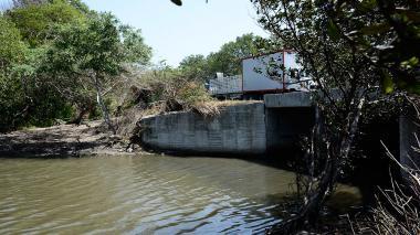 Para rescatar mangles, Invías destapará box culverts en vía Ciénaga - Barranquilla