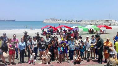 Crean primera playa para mascotas en Santa Marta