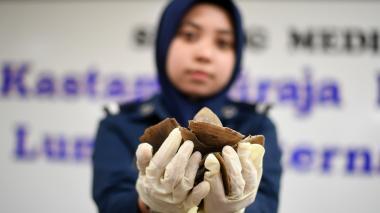 Una joven de la Policía de Malasia sostiene en sus manos escamas de pangolín.