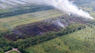 Incendio arrasa un parque natural del sur de Holanda
