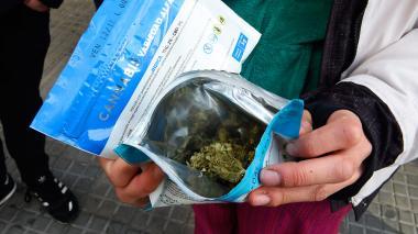 Consumidores de marihuana en Uruguay dejan el mercado negro por la farmacia
