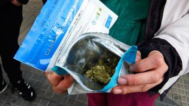 Casi 50% más de inscritos en una semana para comprar marihuana en Uruguay