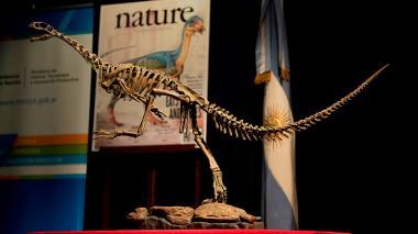 """Así es Chilesaurus, el dinosaurio más """"desconcertante"""" e """"intrigante"""""""
