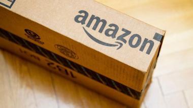 En Reino Unido, un loro consigue hacer un pedido en Amazon