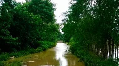 Se desborda el río Mangle entre San Pelayo y Puerto Escondido, en Córdoba