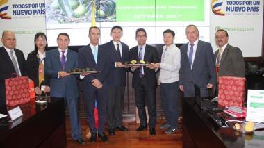 Avanza trámite para que Agucate hass de Colombia llegue a mercado de China