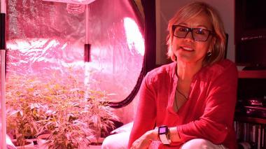 El uso medicinal de la marihuana en Barranquilla