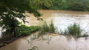 Avalancha provocó mortandad de peces en el río Cesar