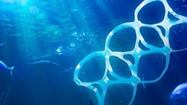 Proyecto busca regular uso de plásticos en San Andrés para proteger el mar insular