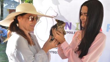 Silvia Pumarejo del voluntariado 'Animar' le entrega la gata a Paola Tovar.