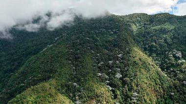 Colombia completó 30 de sus 37 páramos delimitados: Santos