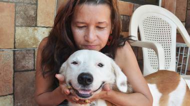 Steven, el perro que sobrevivió  al terrorismo