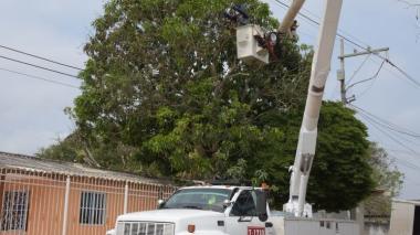 Dos jóvenes, electrocutados cuando cogían mangos de árbol