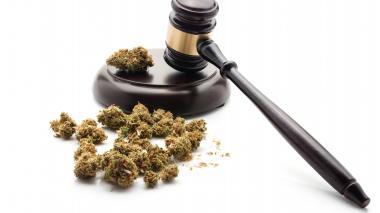 En México aprueban el consumo lúdico de marihuana a un ciudadano