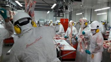 Minerva Foods cerró frigorífico en córdoba