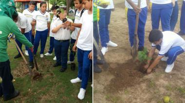 El momento en que niños siembran un árbol en el parque Universal de Barranquilla.