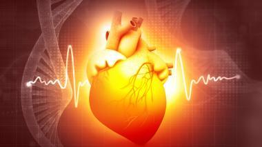 Algunos datos sobre la insuficiencia cardíaca