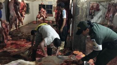 Incautan más de 2 toneladas de carne en matadero ilegal en Ciénaga