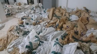 Policía incauta 1.800 babillas listas para comercializar