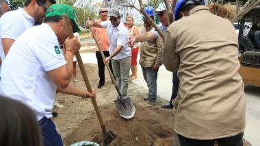 El alcalde Char siembra uno de los 800 árboles en Villa Carolina.