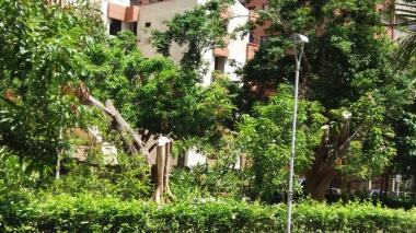 Así quedó el lugar, luego de la tala de los dos árboles en esta zona de la ciudad.