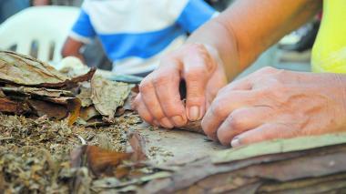 El jamiche se hace con la misma picadura de la hoja de tabaco, según señalan los expertos de este oficio.