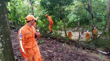 Voluntarios de la DC en la búsqueda del  pequeño Albertico en Tigrera y Minca.